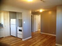 Roomie Till Summer's Over? Great East Side Location!