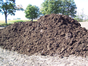 THIS WEEKEND ONLY/ sheep manure