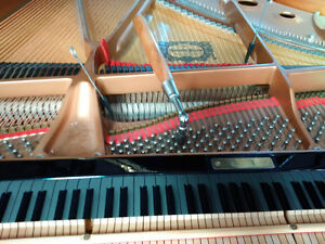 Piano Tuning, Repairs and Rebuilding