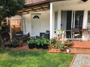 3 bedroom furnished home with fenced outdoor garden