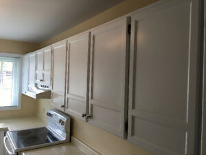 Complete kitchen cupboards & countertops