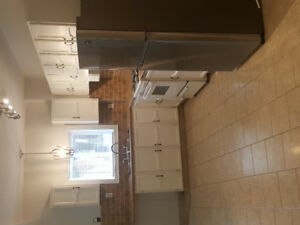 1 Bedroom clean quiet in brampton