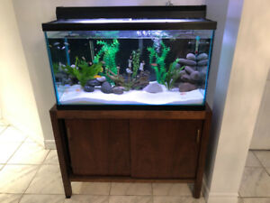 60 gallon fish tank, Fluorescent light, filter, heater, stand.