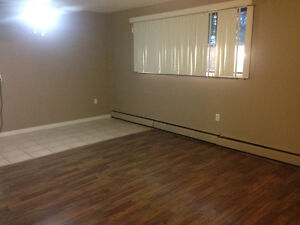 BACHELOR BASEMENT LEASE TAKEOVER READY TO MOVE IN NOW!