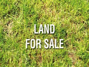 Wanted: Want to buy Land with or without building
