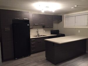 Brand New 1-Bed Basement Suite