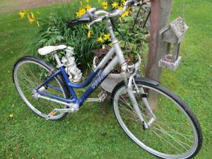 Sprocketless Dynamic Runabout Shaft Drive Aluminum Bike.