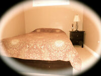 FORT MCMURRAY, TIMBERLEA 1 BEDROOM IN-LAW SUITE AVAILABLE