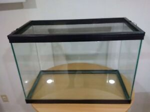 MUST GO NOW! REDUCED TO $25.00 WAS $50 20 GAL REPTILE TANK
