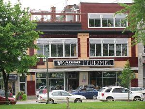 LOFT APPARTEMENT 3 1/2 AU CENTRE-VILLE SALABERRY-DE-VALLEYFIELD