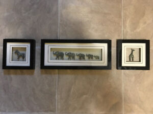 Safari Animals 3 Piece Picture Set