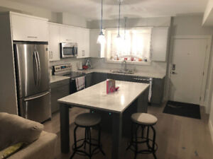 Beautiful 1 Bedroom Furnished Suite (Aberdeen)