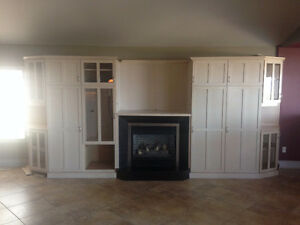 25,000 BTU Fireplace Windsor Region Ontario image 1
