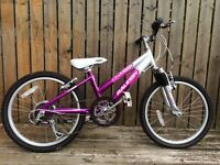 Raleigh Diva bicycle