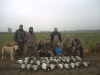 GUIDED GOOSE HUNT EASTERN ONTARIO