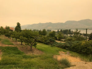 Stunning Views from this Winter Rental Home in Osoyoos