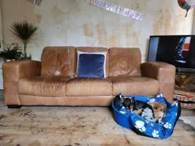 Free tan leather sofa