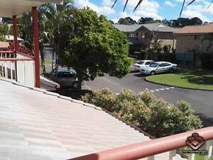 ID 3853511 - SPACIOUS, VERY COMFORTABLE WALK TO BUS 140 Calamvale Brisbane South West Preview