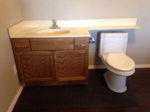 Wooden Bathroom Vanity With Sink And Faucet