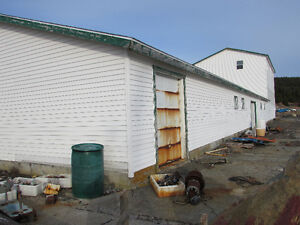 200 FT OCEANFRONT PROPERTY..COLLIERS, OPPORTUNITY KNOCKS! St. John's Newfoundland image 2