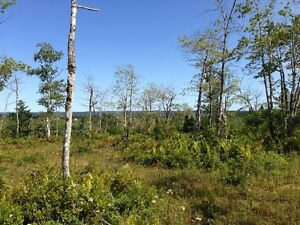 LAND FOR SALE NEAR ST.PETERS CAPE BRETON