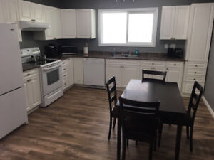 Utilities included. Clean, furnished  2 bedroom suite for rent