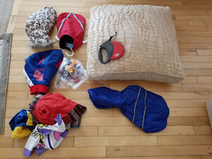 Dog bed,lease,and clothes for sale!Moving sale!