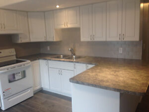 Walkout 1 bedroom apt available Mid August