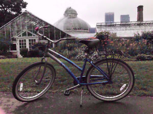 No.4.90% New light blue Del _Sol single speed feet break bike