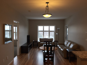 Wascana Park Beautiful 2 Bed, 2 Bath Condo for Rent