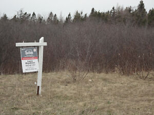 Land for Sale - Road Frontage Main ST.