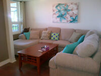 Washago/ Orillia/ Severn Bridge 1 bedroom apt.