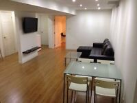 1 bedroom basement apartment for rent, available from November