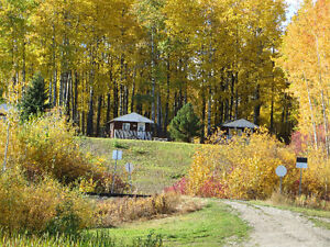 RV Park/Campground Featuring Log Home For Sale Prince George British Columbia image 8