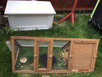 Rabbit & hutch