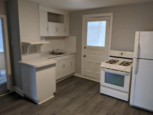 Clean 1 bedroom near Ottawa St available April 1