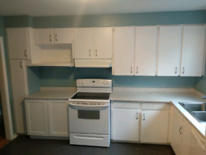 4 Bedroom Apartment $1100 POU