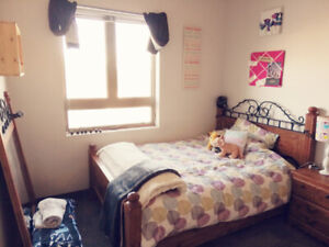 Subletting room from June 1st to August 28th UOIT/DC campus