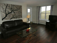 Furnished One and Two Bedroom Suites