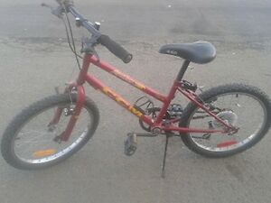 "20"" Girls CCM Mountain Bike"