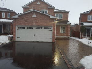 2 Bedroom Basement Apartment for Rent in Ajax