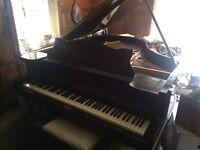 STECK Mini Grand Piano