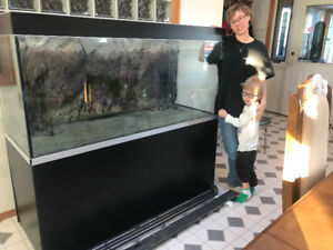 Large fresh water fish tank for sale