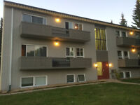 1/2 month free rent - Great 2 BR -newly renovated apt - Red Deer