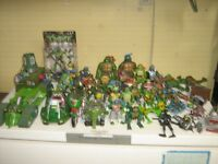 Massive Teenage Mutant Ninja Turtles Collection