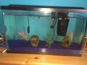 Fish tank 10 gallon