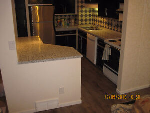 Brand new renovated condo in clairview !!  Ready to move in !