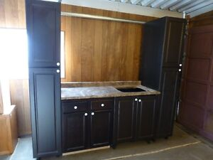 Cabinets and Countertop with sink cut-out