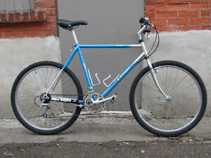 VINTAGE FIORI MOUNTAIN BIKE