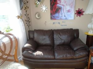 Pure Leather Loveseat